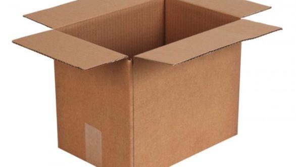 Le carton : une success story qui n'est pas prête de s'arrêter !
