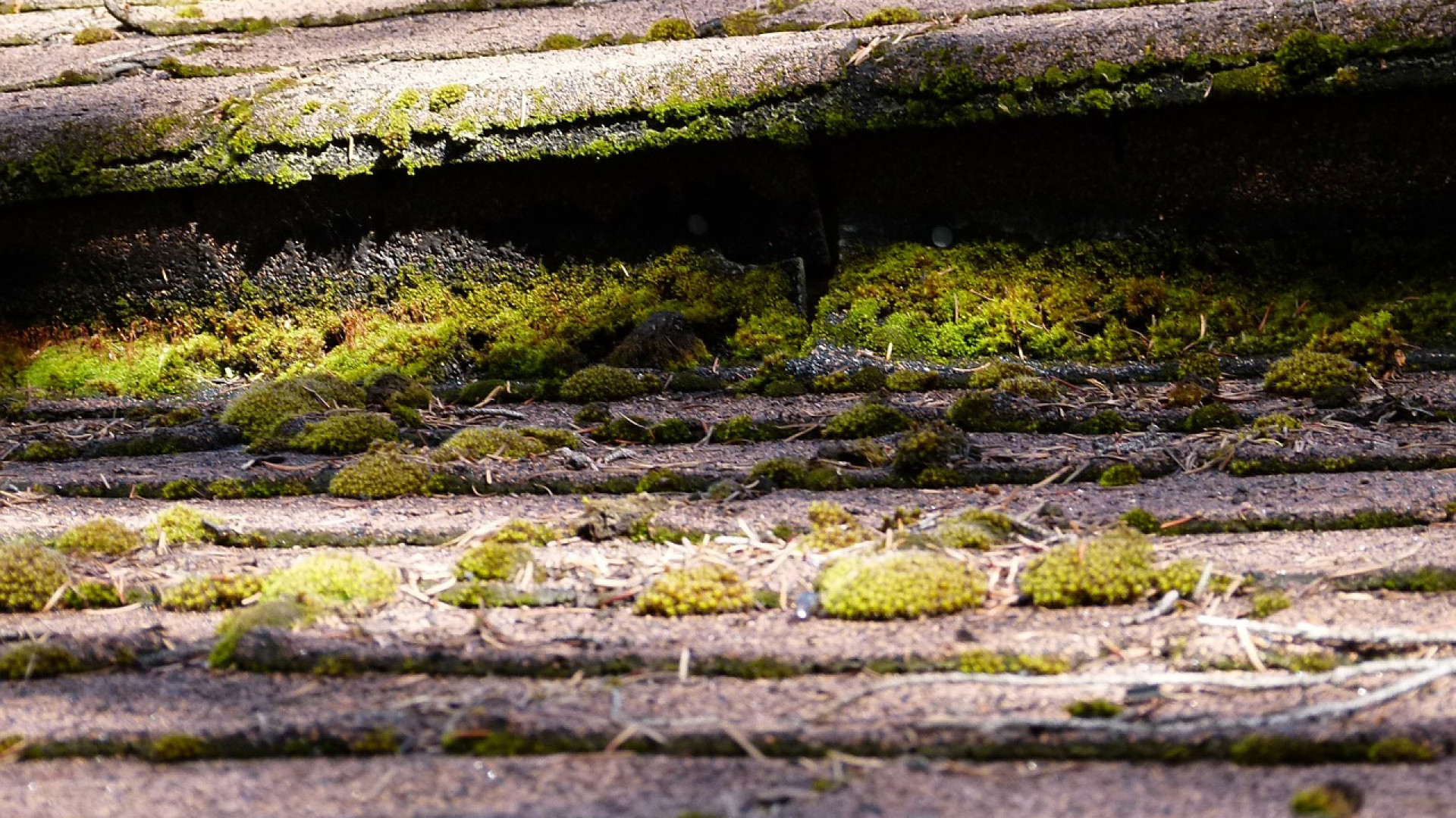 Comment parvenir à assainir une maison humide?