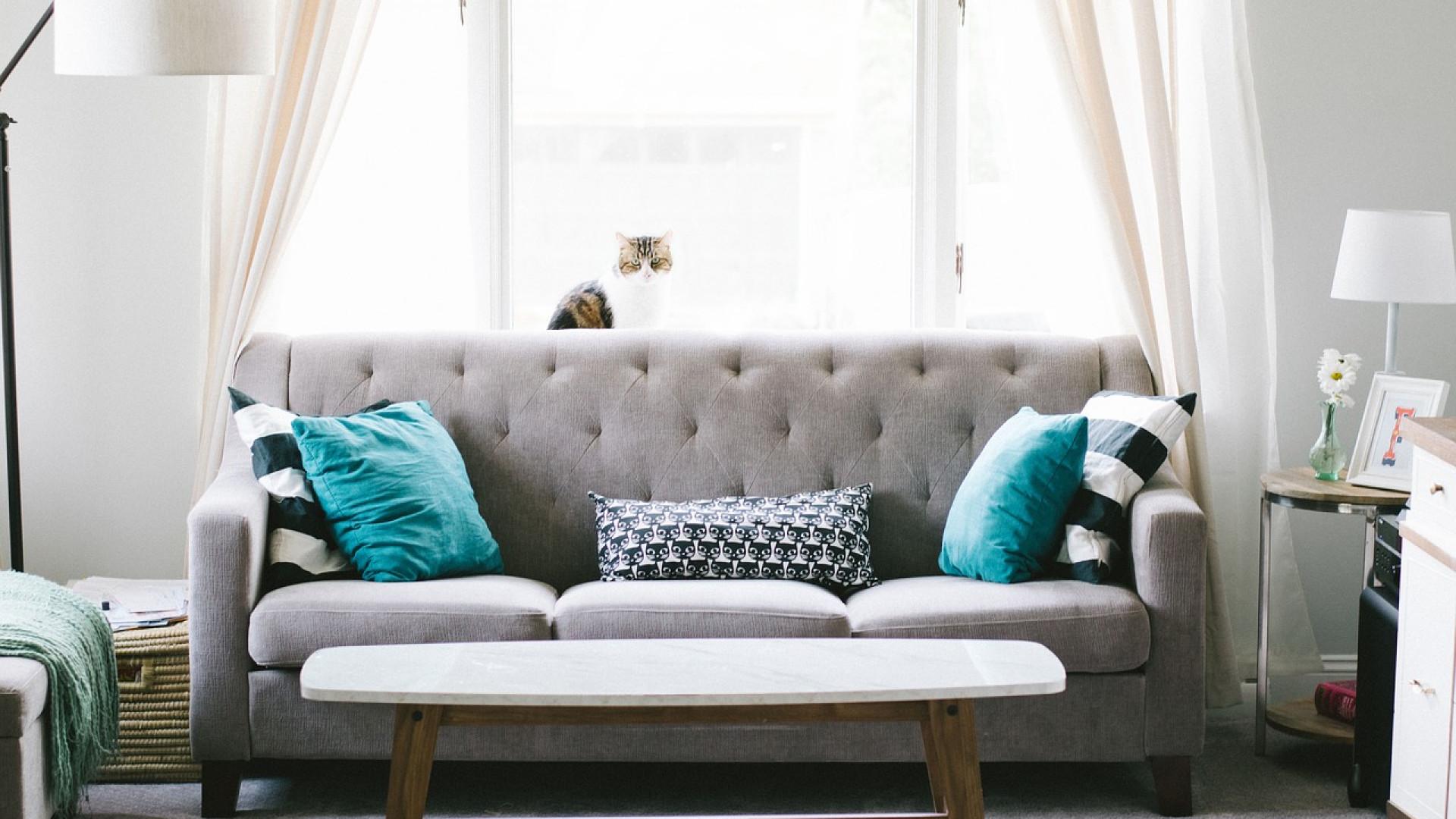 Maison et déco: les tendances à suivre