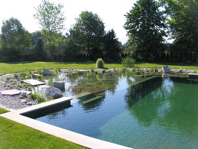 Conseils pour l'utilisation de l'aspirateur de piscine