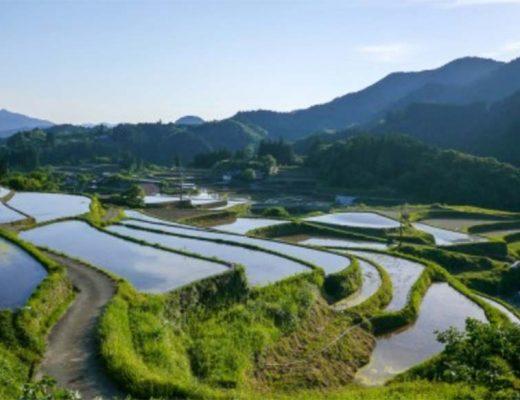 Réalisez un superbe séjour aux Philippines